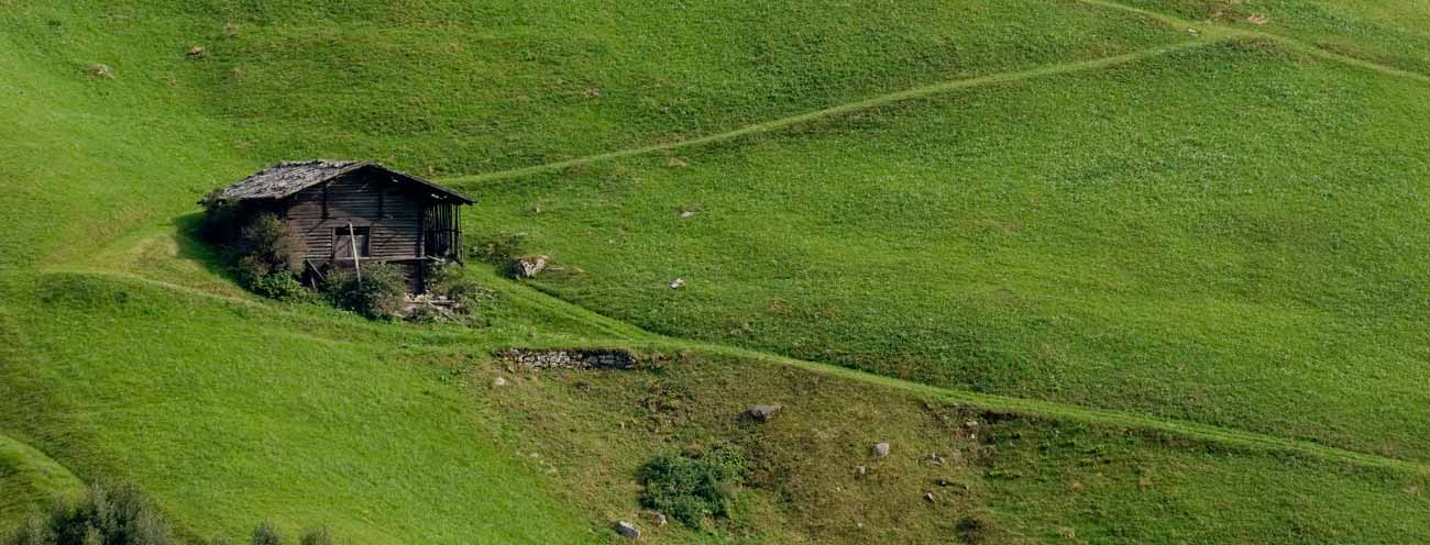Small hay barn in the middle of a very steep meadow