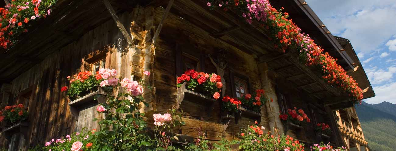 A typical old and well-preserved farm in Passeiertal of wood with balconies full of flowers