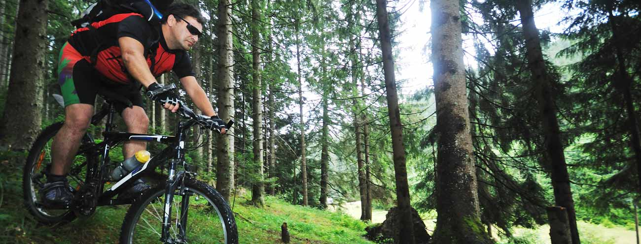 Downhill mountain biker in the middle of the forest